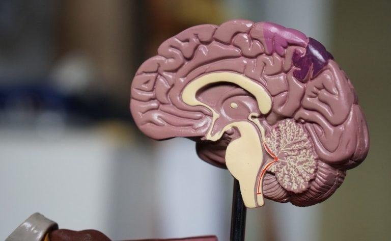 Genius-Level Neurons