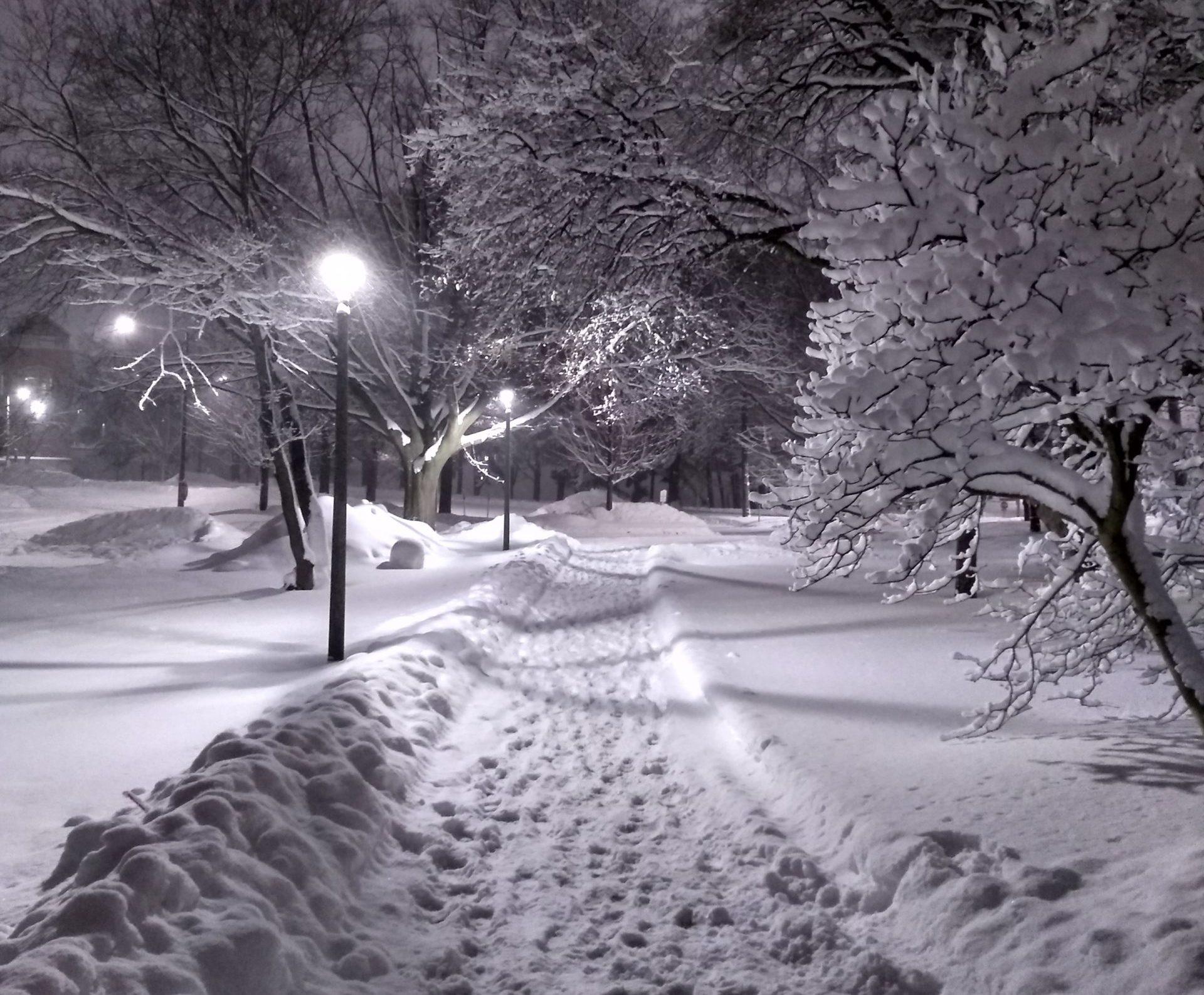 Snow covered walkways