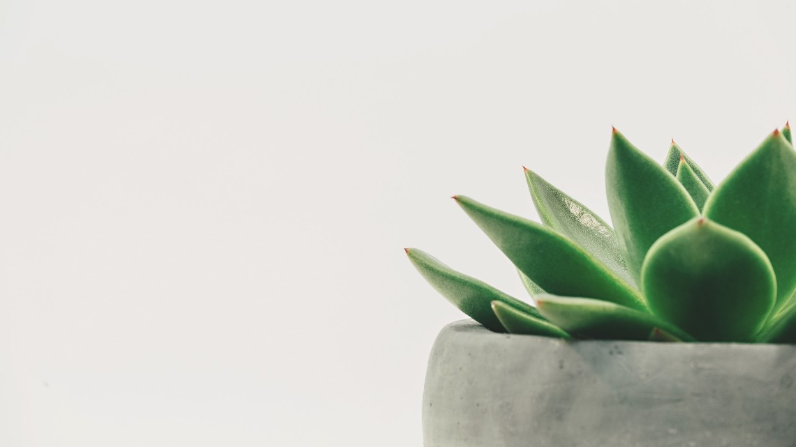 Why I Fell Out of Love With Minimalism