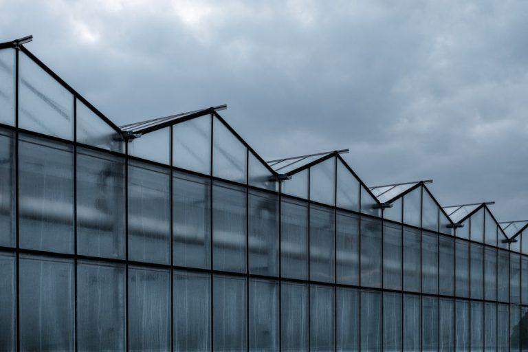 A Greenhouse Near You