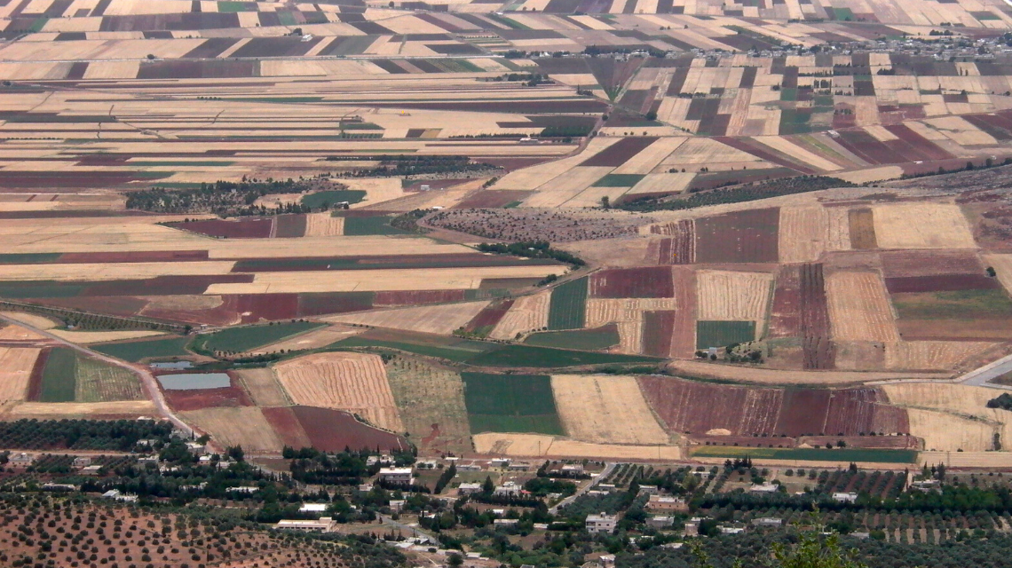 A birds-eye-view of Syria's Orontes Valley agriculture, west of Hama. This photo was taken pre-civil-war in2006, just before the drought of 2007-2011.