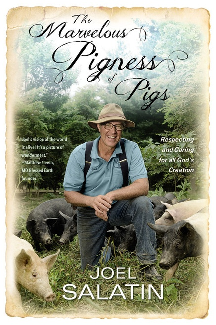 Provocative ideas about agriculture from a Christian farmer