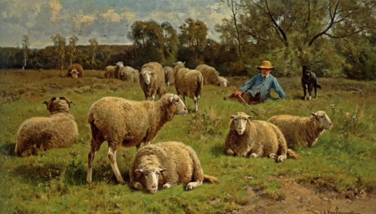 Pastor, Know Your Flock